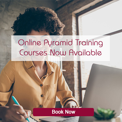Online Pyramid Training